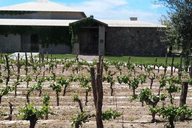 WINERIES DAY TOUR with private guide driver just for you!