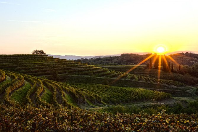 Small-Group All-Inclusive Wine Tours from Solvang