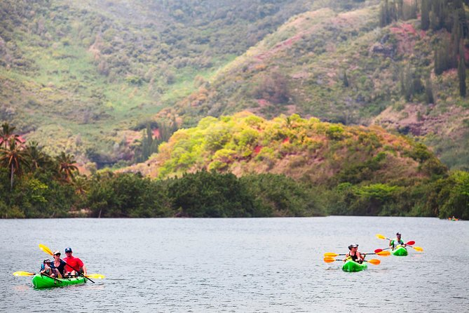 Guided Kayak Adventure on the Wailua River photo 1