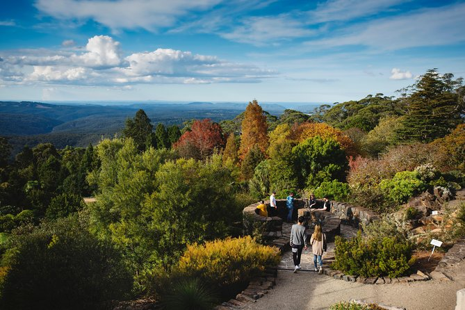 Blue Mountains Botanic Garden or Bilpin Morning Tour departing from Katoomba photo 10