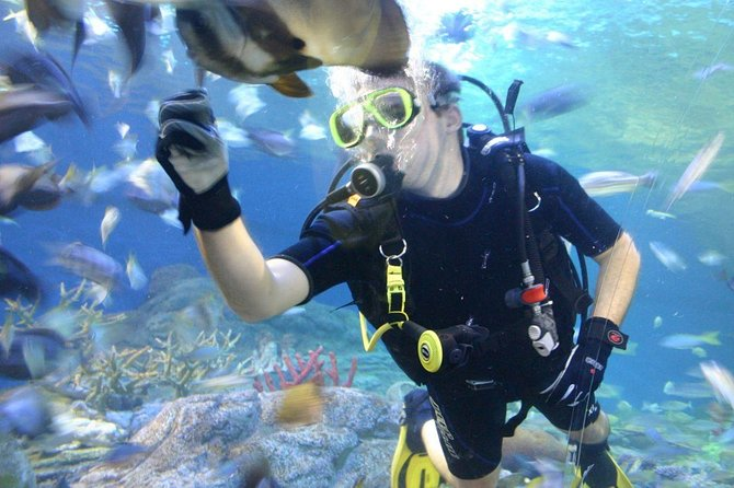 Underwater World in Pattaya Admission Ticket