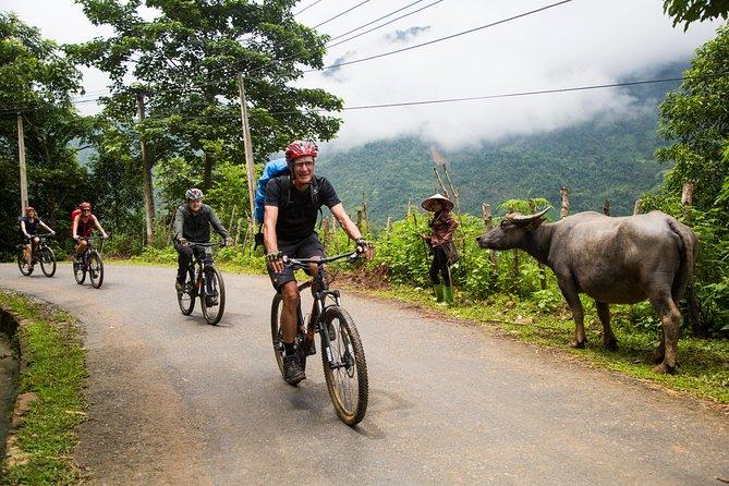 SAPA Biking Tour: Half day Mountain View and Bicycle Trip ( Sapa - Ta Van)