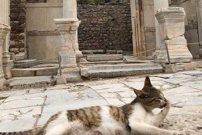 Half Day Ephesus & Temple of Artemis Tour from Izmir
