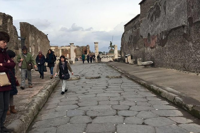 Transfer with Minivan from Naples to Sorrento with 2 hrs stop at Pompeii