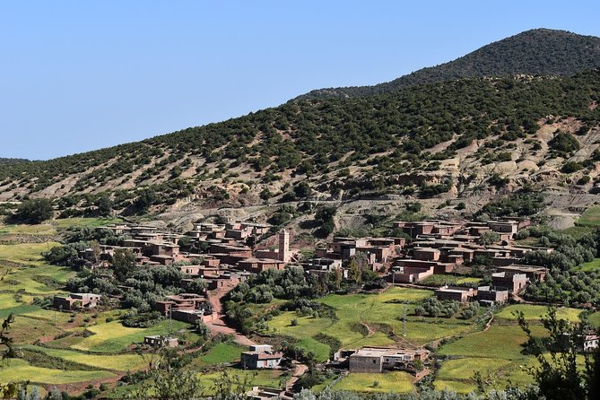 Private Day Trip to Ourika Valley and Atlas Mountains photo 4
