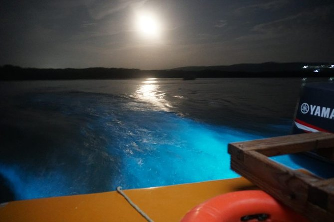Luminous Lagoon (Glistening Waters) Tour from Grand Palladium Resorts photo 6