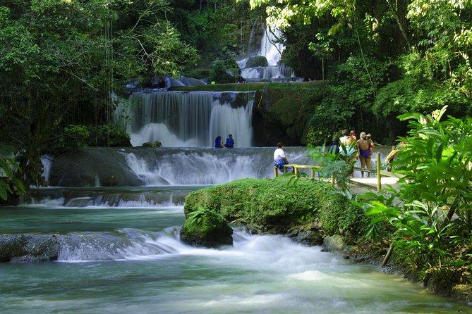 Black River Safari & YS Falls with Lunch from Runaway Bay and Ocho Rios