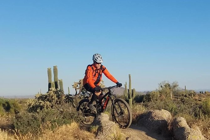 Half-Day Private Sonoran Desert Mountain Biking Tour (Single Rider)