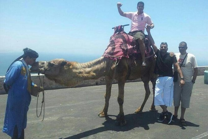 Agadir city tour and Kasbah photo 3