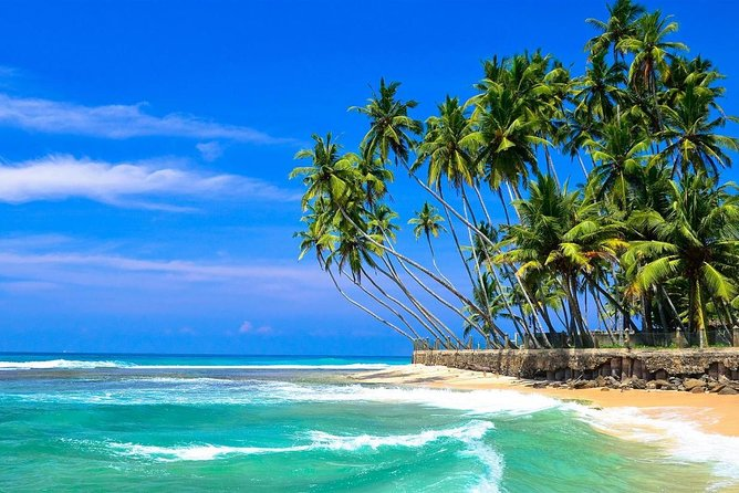 Mirissa to Colombo Airport (Private Transfer) With Holiday Walkers Sri Lanka photo 4