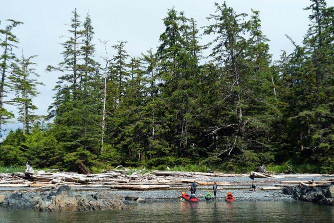 Private Boat, Kayak, & Hike Adventure
