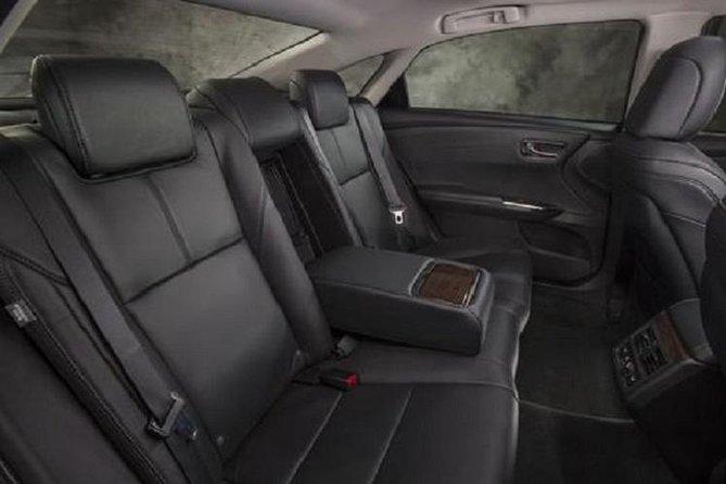 Spacious Rear Seat