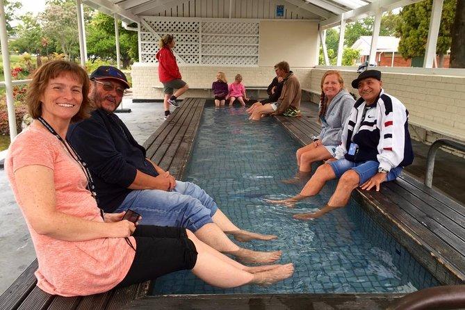 Private Tour Rotorua up to 8 Passengers