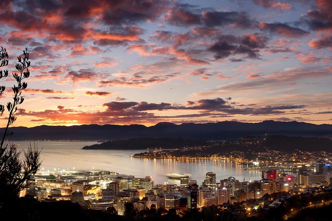 Wellington City Tour at Twilight Includes Fish n Chips
