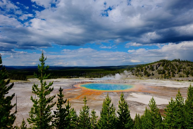 PRIVATE TOUR: The Best of Yellowstone National Park. Picnic lunch included! photo 25
