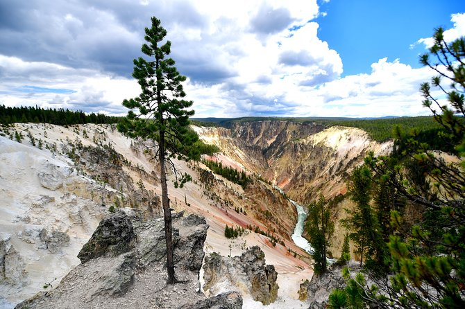 PRIVATE TOUR: The Best of Yellowstone National Park. Picnic lunch included! photo 33