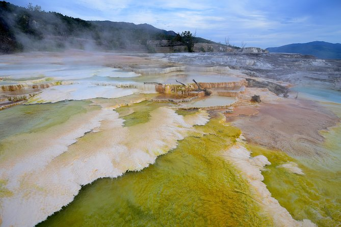 Private Tour of Yellowstone! Gourmet picnic lunch included. $1300 per group photo 27