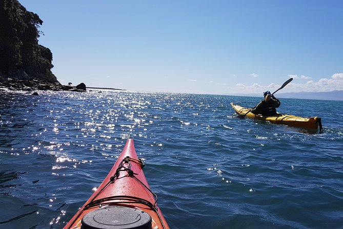 Sea Kayak Kapiti Island & Island combo