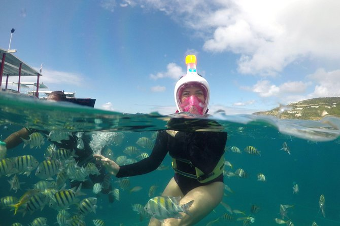 2-Hour Shipwreck Snorkeling from Philipsburg