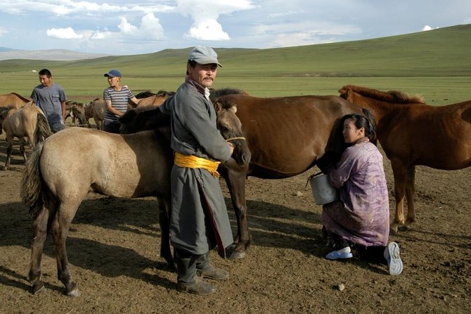 Journey to the roots of nomadic culture and beautiful nature in Mongolia 9N/10D