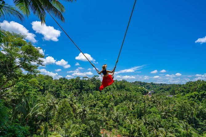 Best Experiences of Ubud Tour with Jungle Swing