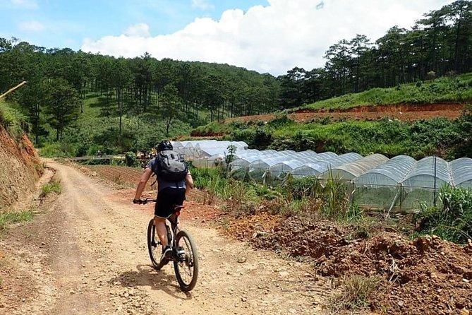Crazy 8 mountain biking in Da Lat