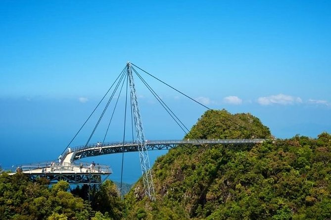 Private Sightseeing Tour (A - SkyBridge) - experienced driver cum guide.