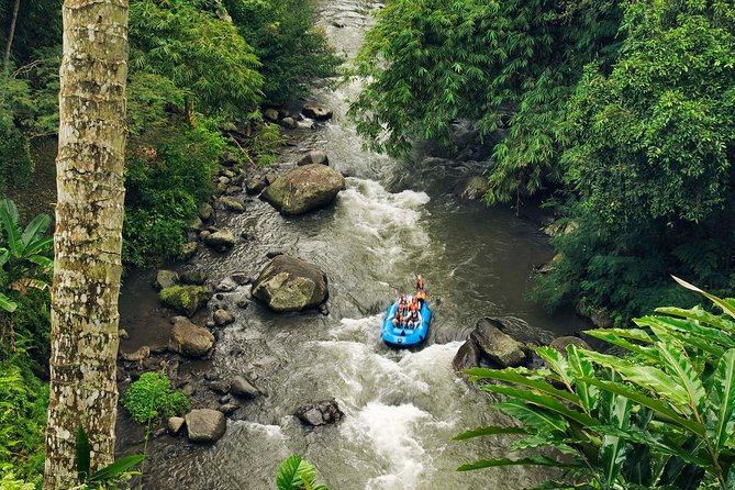 Ubud White Water Rafting and Seawalker Packages