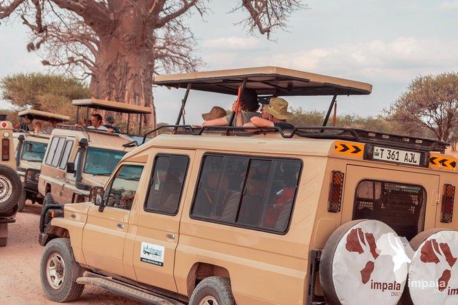 2nights/3days Ngorongoro Manyara Safari