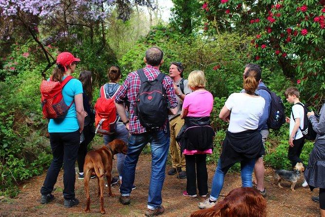 Coastal Walk and Chowder Trail