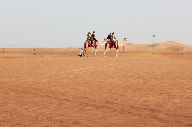 Private - Morning Desert Safari with Dune Bashing and Sand Boarding photo 3