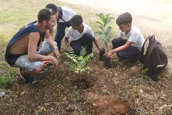 30 tree project