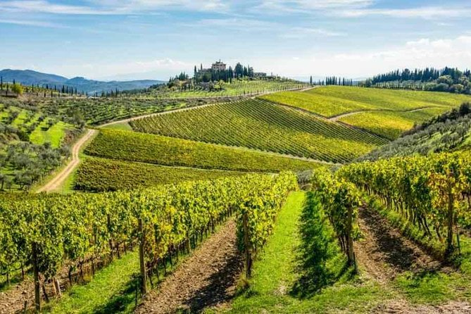 Transfer from Rome to Florence with tasting wine in Chianti included