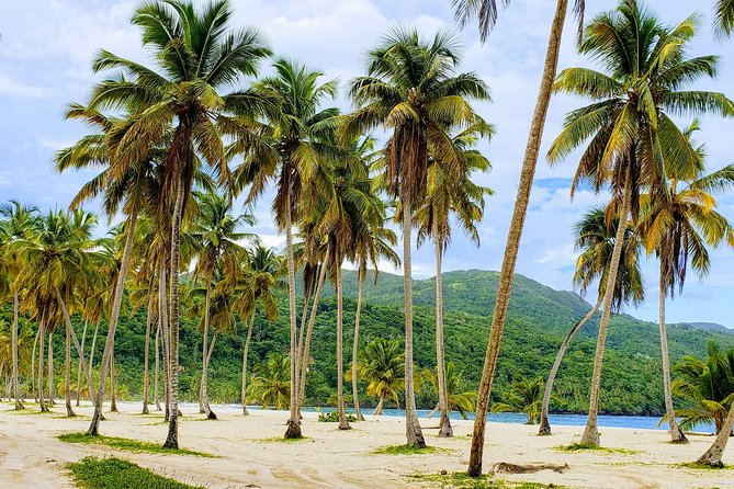 Experience the Dominican Republic!