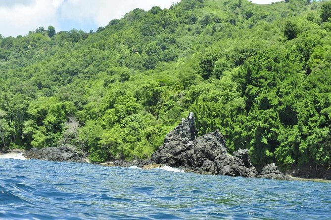 Little Tobago and Bird Sanctuary Daring Experience