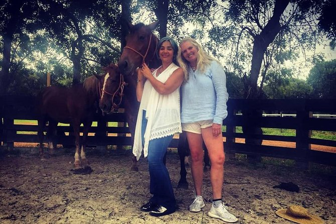 Coaching With Horses in Dominican Republic