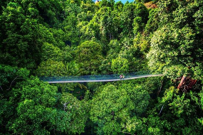 Chauffeur: Taman Negara to Singapore Van Transfer