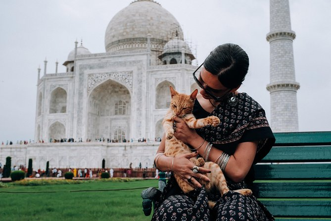 Agra Half-Day Tour of Taj Mahal and Agra Fort by Car