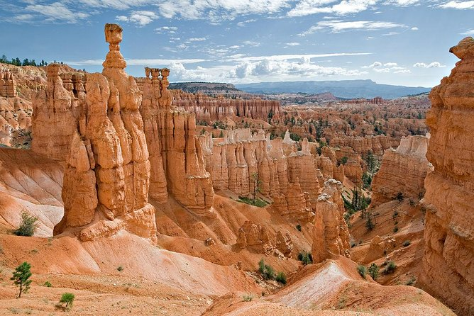 Bryce Canyon National Park & Zion National Park VIP One Day Tour photo 8