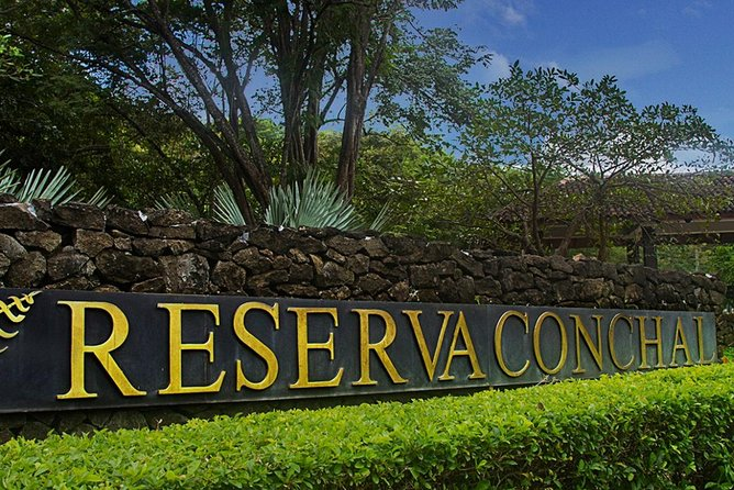 Private Round Trip Service: From Liberia Airport To Reserva Conchal