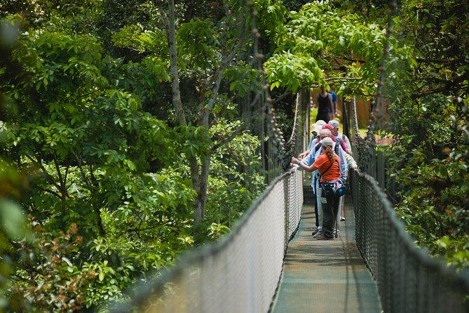 Hanging Bridges Adventure San Luis From San Jose