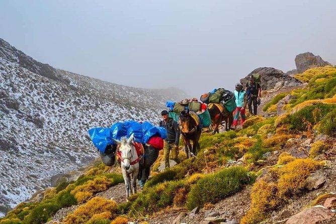Discover Berber villages in High Atlas mountains 4 days Trekking in High Atlas