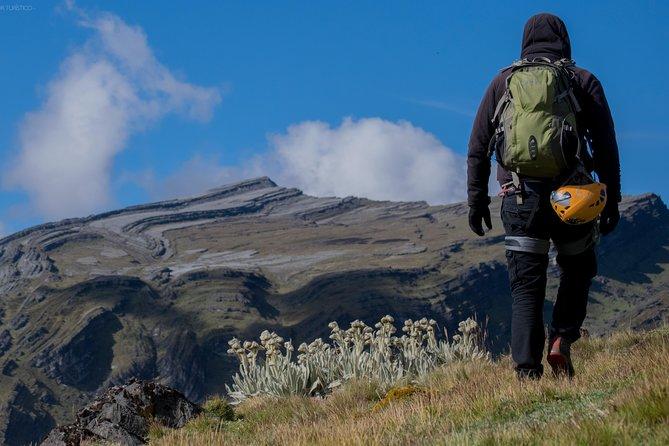 Páramo to discover in Santander | Condor Watching.