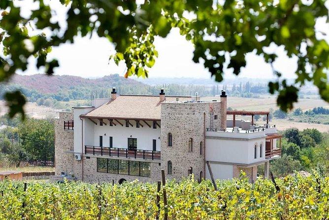 Wine tasting tour in Kakheti