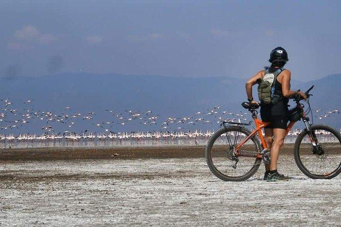 Cycling Lake Manyara