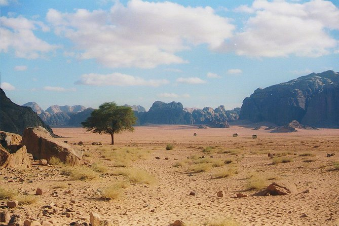 Private Day tour to Wadi Rum from Petra photo 2
