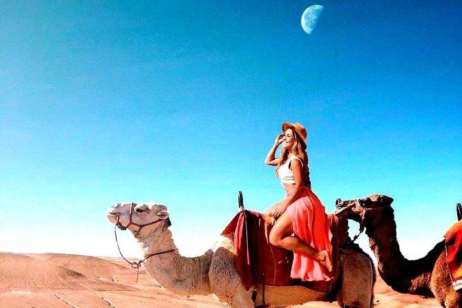 Magical dinner on sunset in Agafay desert and Camel Ride