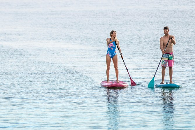 Stand Up Paddle Boarding Hire
