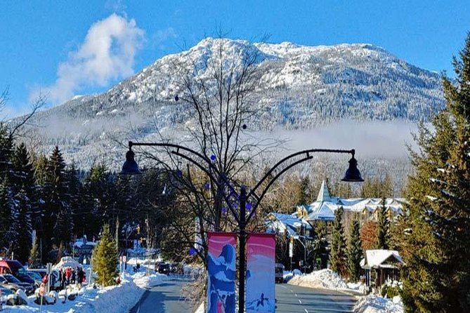 Vancouver City Tour With Look Out and Whistler Highlights