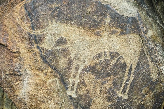 Day Trip to Tanbaly Petroglyphs